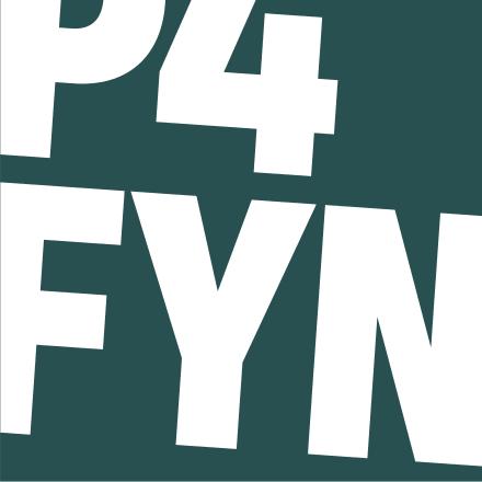 Fyn image