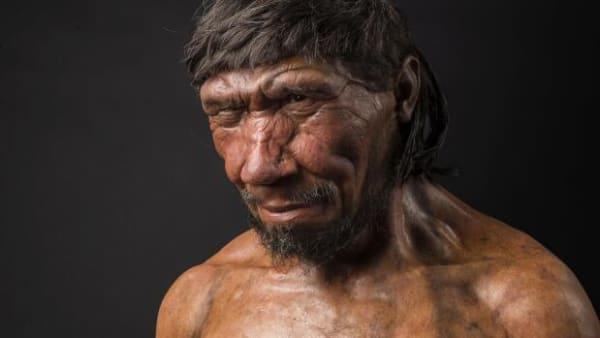 120.000 år gamle sten kan ændre Danmarks historie: Neandertalere boede måske på Sjælland