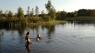 Corona-mink rådner i jorden nær badesø: Myndighederne vidste i dagevis, den var gal